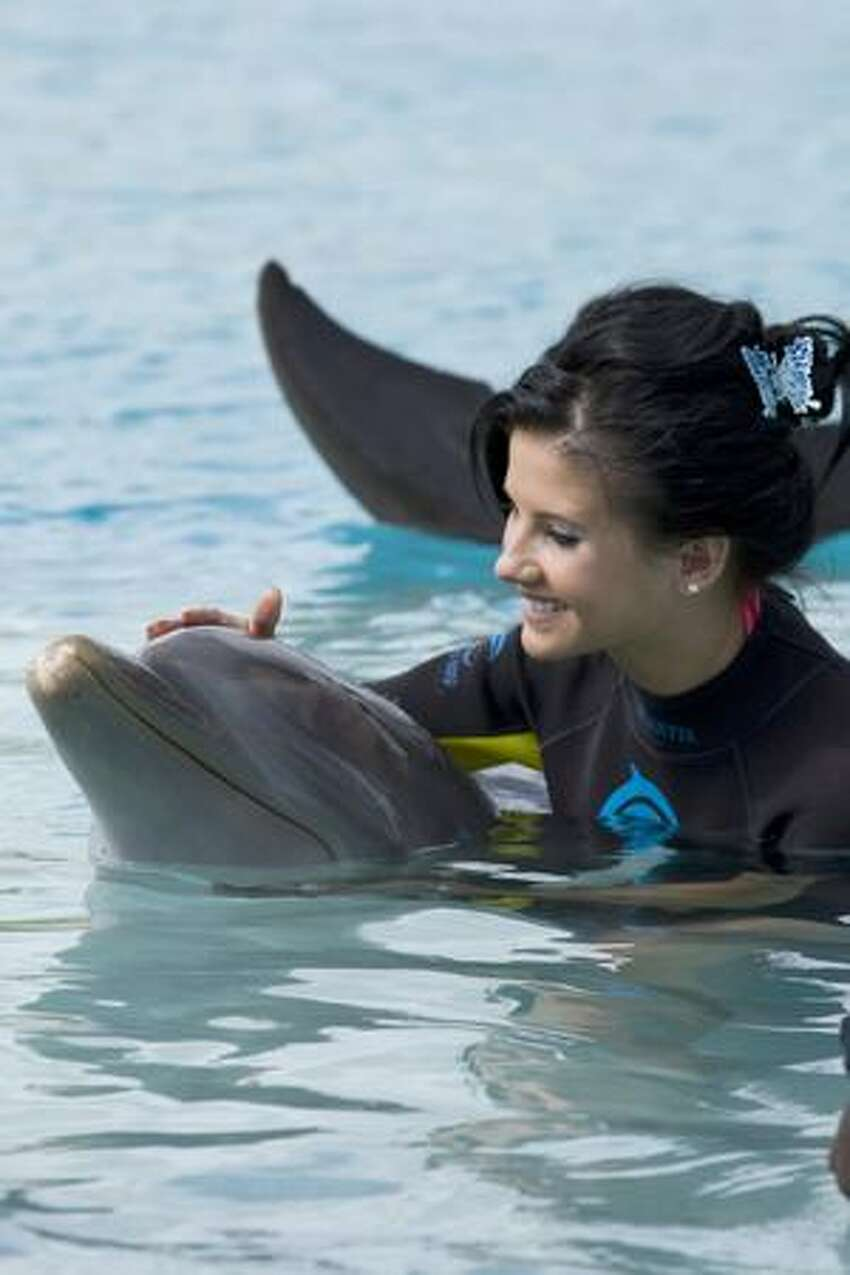 Larissa Costa, Miss Brazil, pets a dolphin while in Dolphin Cay at Atlantis.