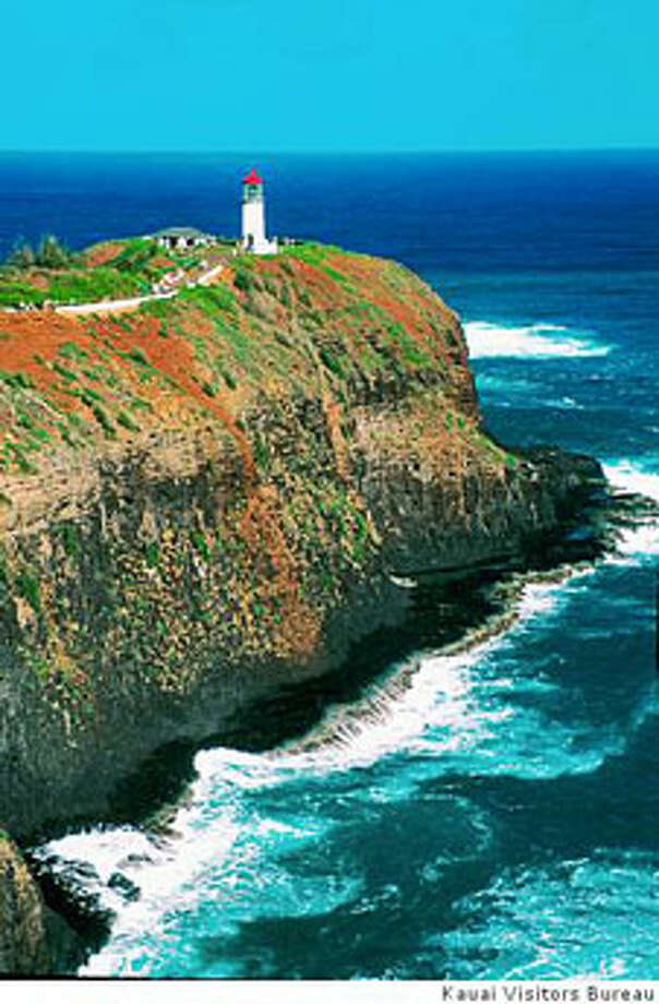 The oceanfront cliffs and vegetation on Kilauea Point provide food and shelter for endangered birds.