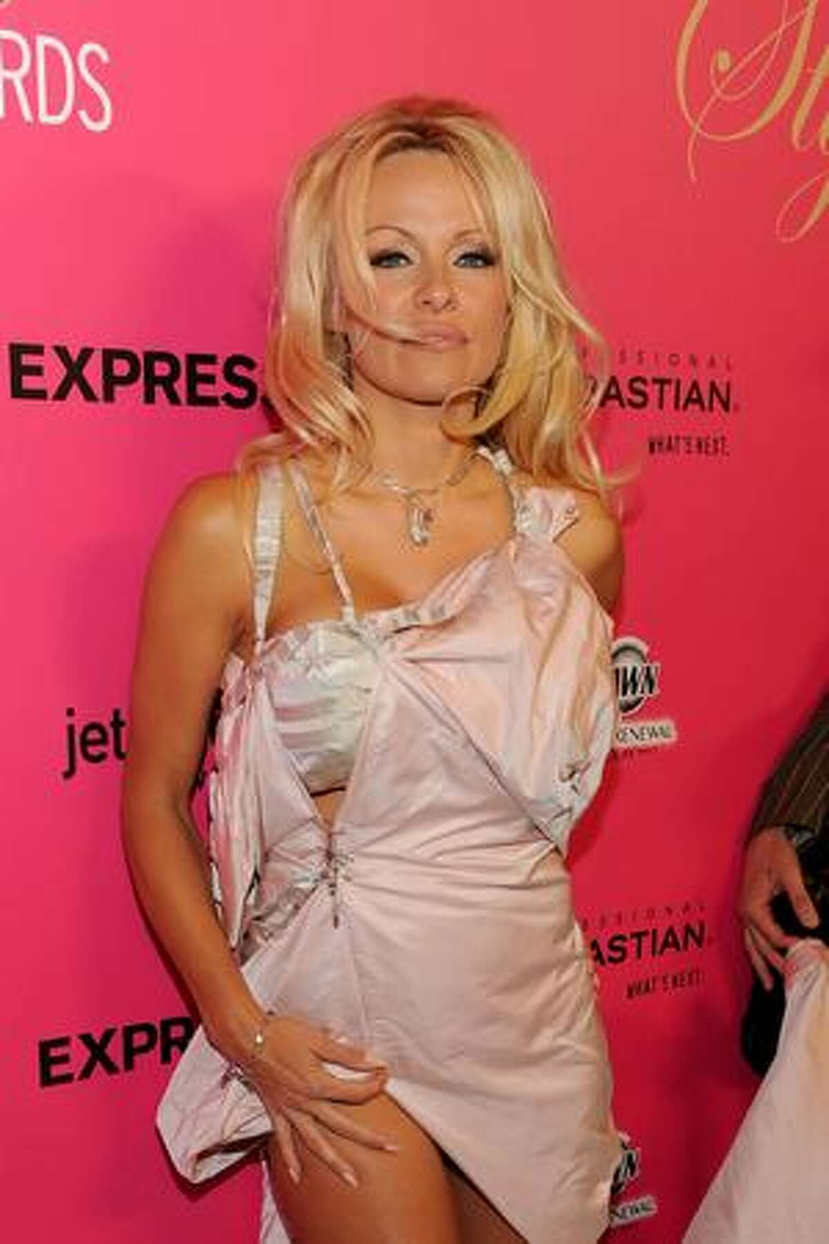 Actress Pamela Anderson arrives for the 6th Annual Hollywood Style Awards at Armand Hammer Museum in Los Angeles, California.