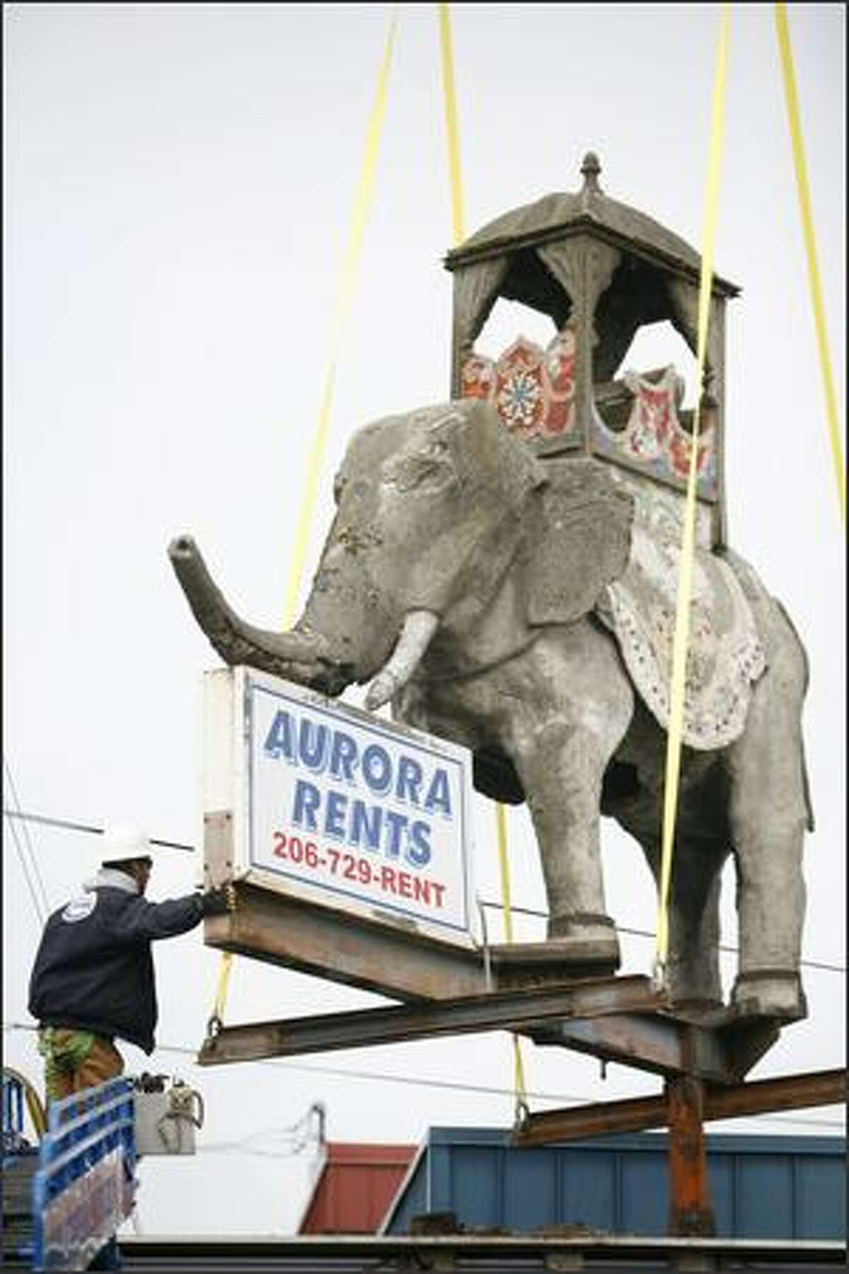 Chris Beasley with Shoreline Sign and Awning guides the 8,400 pound concrete elephant in front of Aurora Rents in north Seattle.