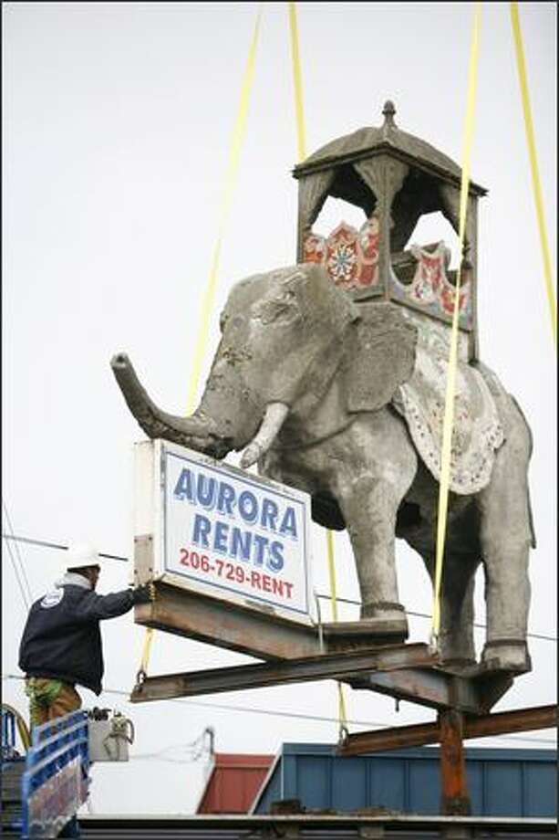 Chris Beasley with Shoreline Sign and Awning guides the 8,400 pound concrete elephant in front of Aurora Rents in north Seattle. Photo: Joshua Trujillo, Seattlepi.com