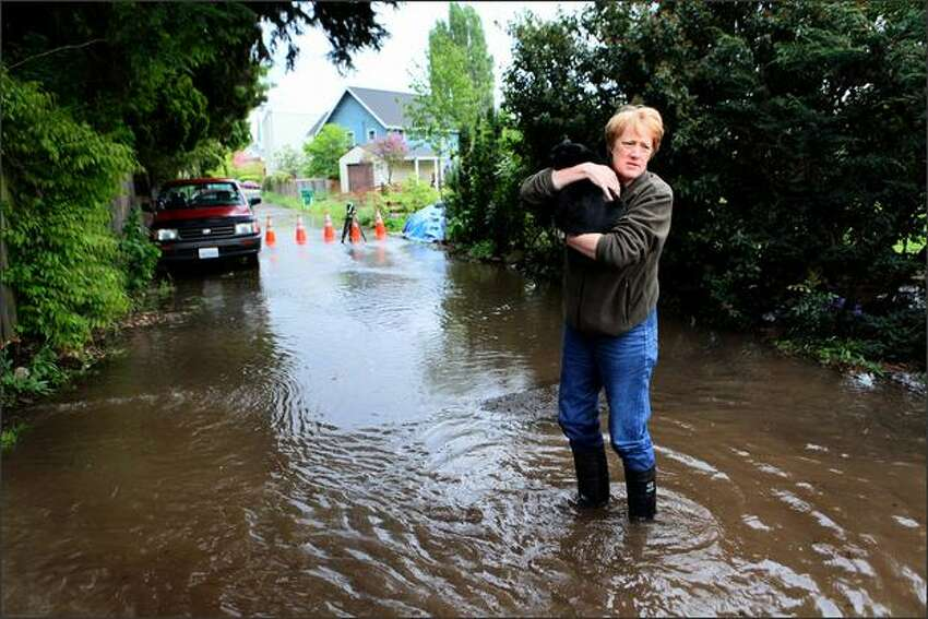 A neighbor holds a cat removed from a flooding home after a water main burst on Tuesday in Seattle's Ravenna neighborhood.
