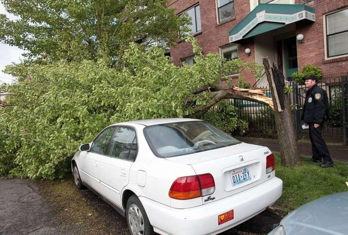 A downed tree rests across parked cars on Harvard Avenue East in Seattle's Capitol Hill neighborhood during a strong windstorm on Friday April 2, 2010. Power was knocked out to thousands of homes and businesses across the region because ofg the high winds.