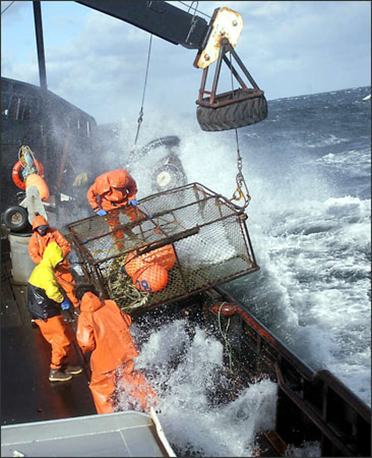Crewmen ready a crab pot to be stacked on board the F/V Exito while fishing for red king crab in Bristol Bay. The 2003 season lasted five days and two hours, and was plagued with gale-force winds of 35 knots or higher almost every day. Photo: Karen Ducey, Seattle Post-Intelligencer