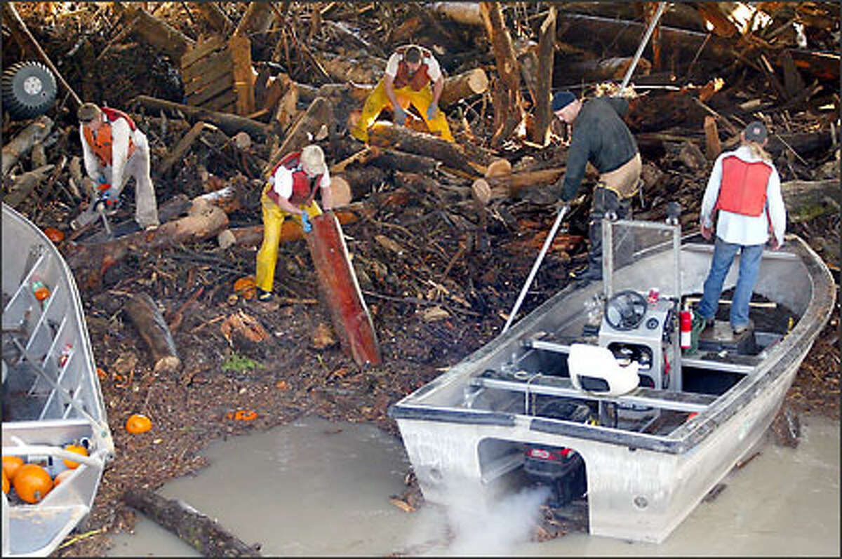 Work crews labor with boats, chain saws, pike poles and hands to free logs and other debris from the pylons of U.S. Route 2 on Ebey Slough near Everett. Volunteers and Navy Seabees pitched in on sandbagging and cleanup.