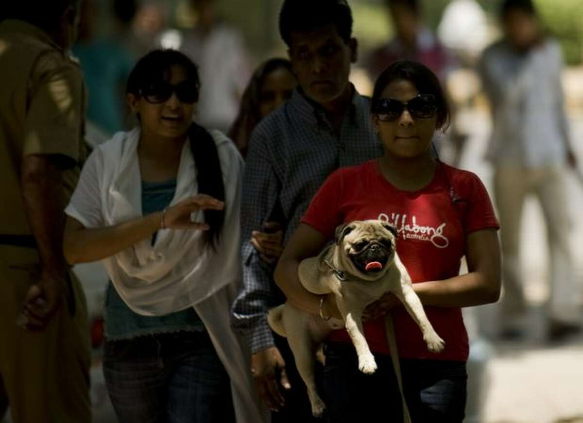 An Indian girl walks in the shade while holding a pug in New Delhi as temperatures in the Indian capital soared above 113 degrees Fahrenheit.