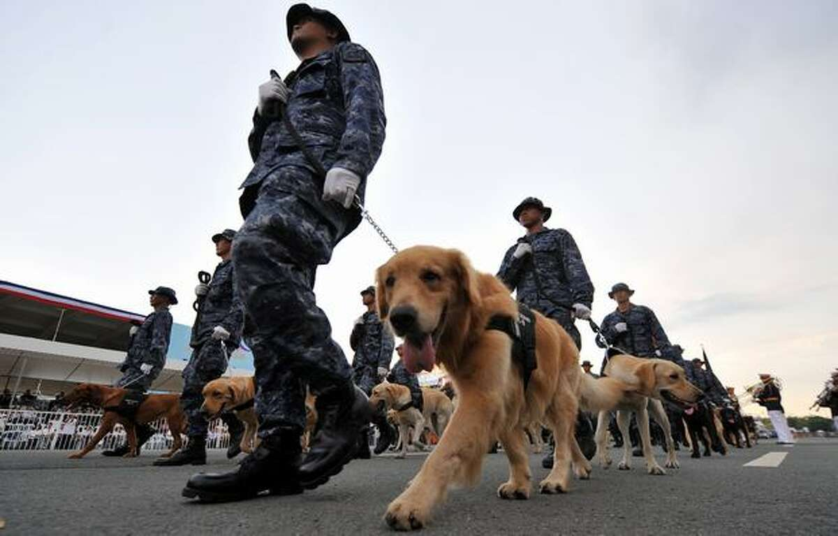 Philippine soldiers march with their dogs during the celebration of the 112th anniversary of the proclamation of Philippine independence at the Quirino Grandstand in Luneta, Manila. The Philippines marked today the proclamation of independence from Spanish colonial administration in 1898 by Filipino revolutionaries, the same year that the islands were ceded to the US. The Philippines finally became an independent state in 1946 following the end of World War II.