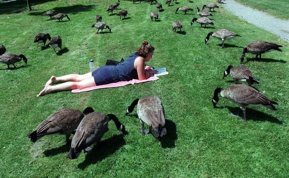 "The July 1997 photo caption read: Kris Olliver, 23, relaxes among a flock of Canada geese along Green Lake. She had just finished running and was reading ""Stones From the River."" About lying with the geese, she said ""It's peaceful."" Olliver lives in Seattle. Photo: P-I File"