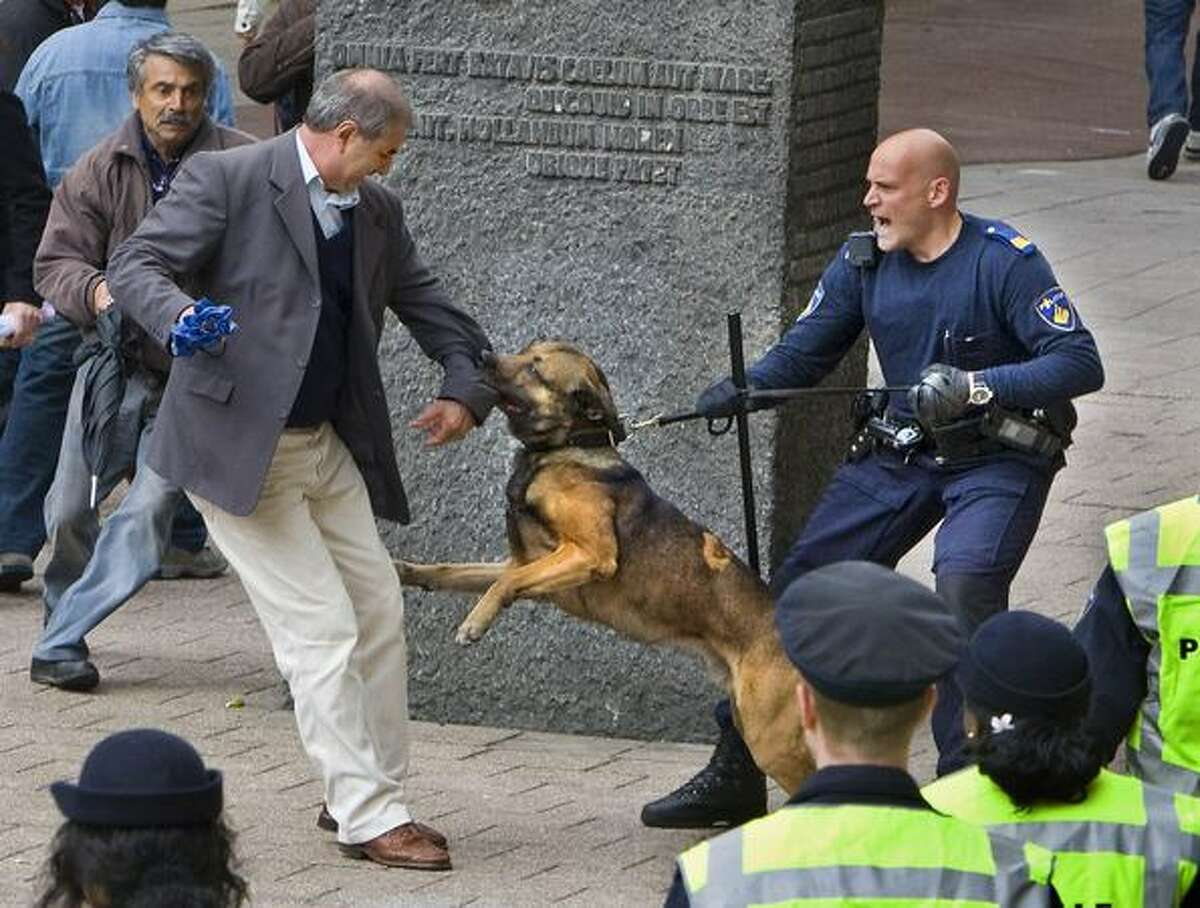 A Dutch policeman and his dog arrest a demonstrator in front of the city hall in Rotterdam at the end of the traditional May Day march.