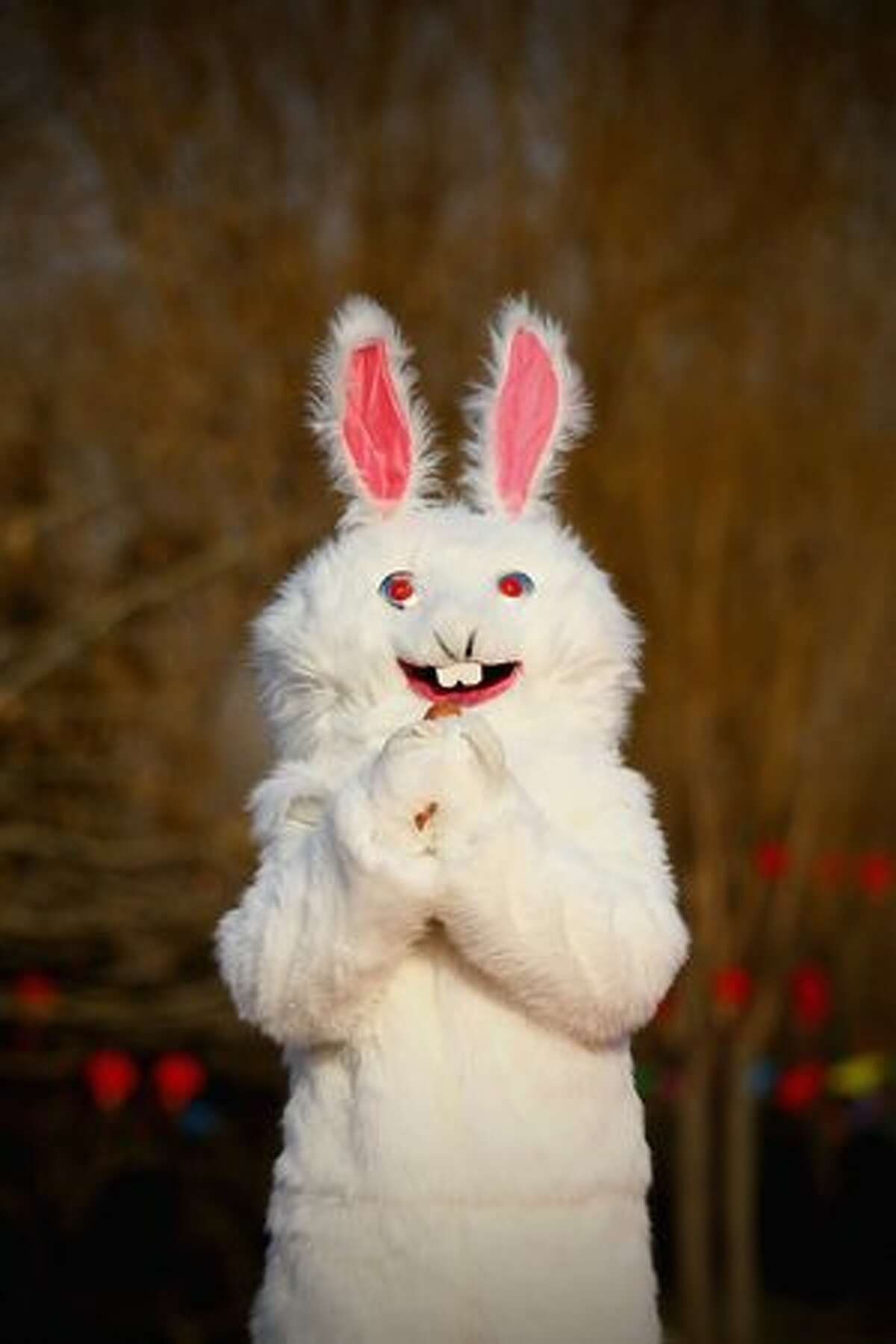 A performer dressed in a rabbit costume shows the gesture of paying a new year call at a temple fair to celebrate the Lunar New Year of Rabbit in Beijing, China.