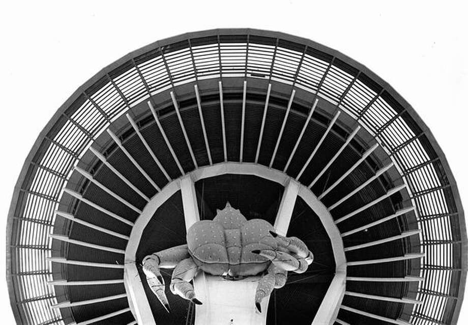 The October 1985 photo caption read: Go fishing from the observation deck of the Space Needle this month and you may just catch a crab - a giant King Crab, dangling 425 feet above the ground. The 50-foot-wide inflatable crab is made of vinyl-coated nylon and is suspended from one-inch steel cables. It was put there as a publicity stunt by sponsors of Fish and Seafood Month. Photo: P-I File