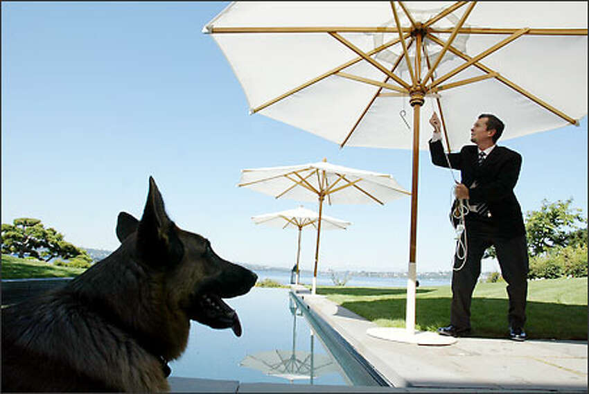 Ringo Allen is the house manager for a family in Medina, which means he does it all at their mansion, including putting up umbrellas by the pool and tending to their German shepherd.Brown: