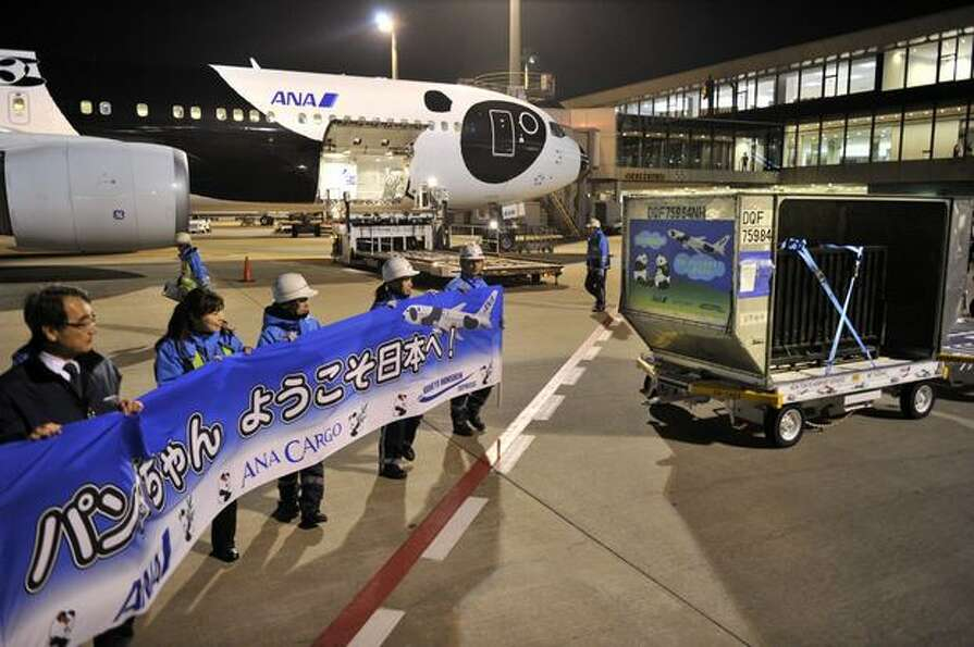A pair of giant pandas arrives at Tokyo's Narita International Airport on February 21, 2011 to go on