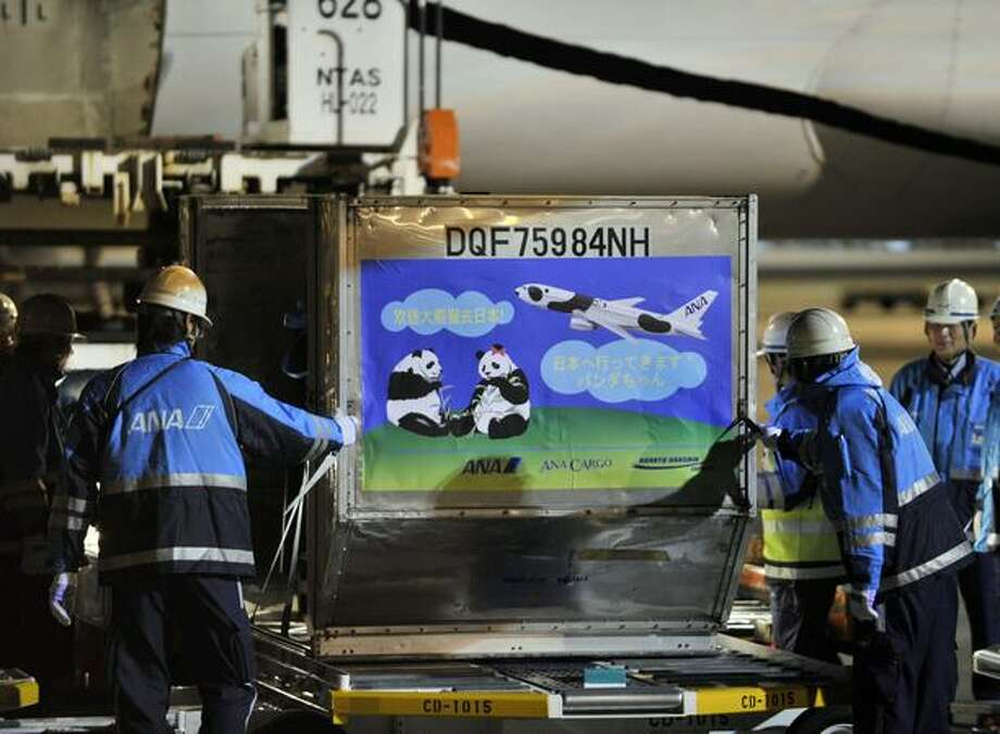 A pair of giant pandas arrives at Tokyo's Narita International Airport on February 21, 2011 to go on display at Tokyo's Ueno Zoo. The Tokyo metropolitan government, which runs Ueno Zoo, will pay $950,000 a year for the next decade to lease the animals. The money is to be spent on wild animal protection in China. Photo: Getty Images