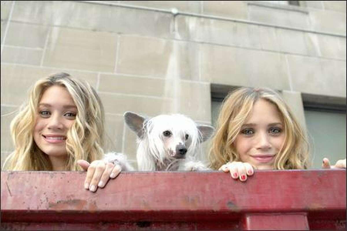 Ashley Olsen and Mary-Kate Olsen with Reinaldo the dog.