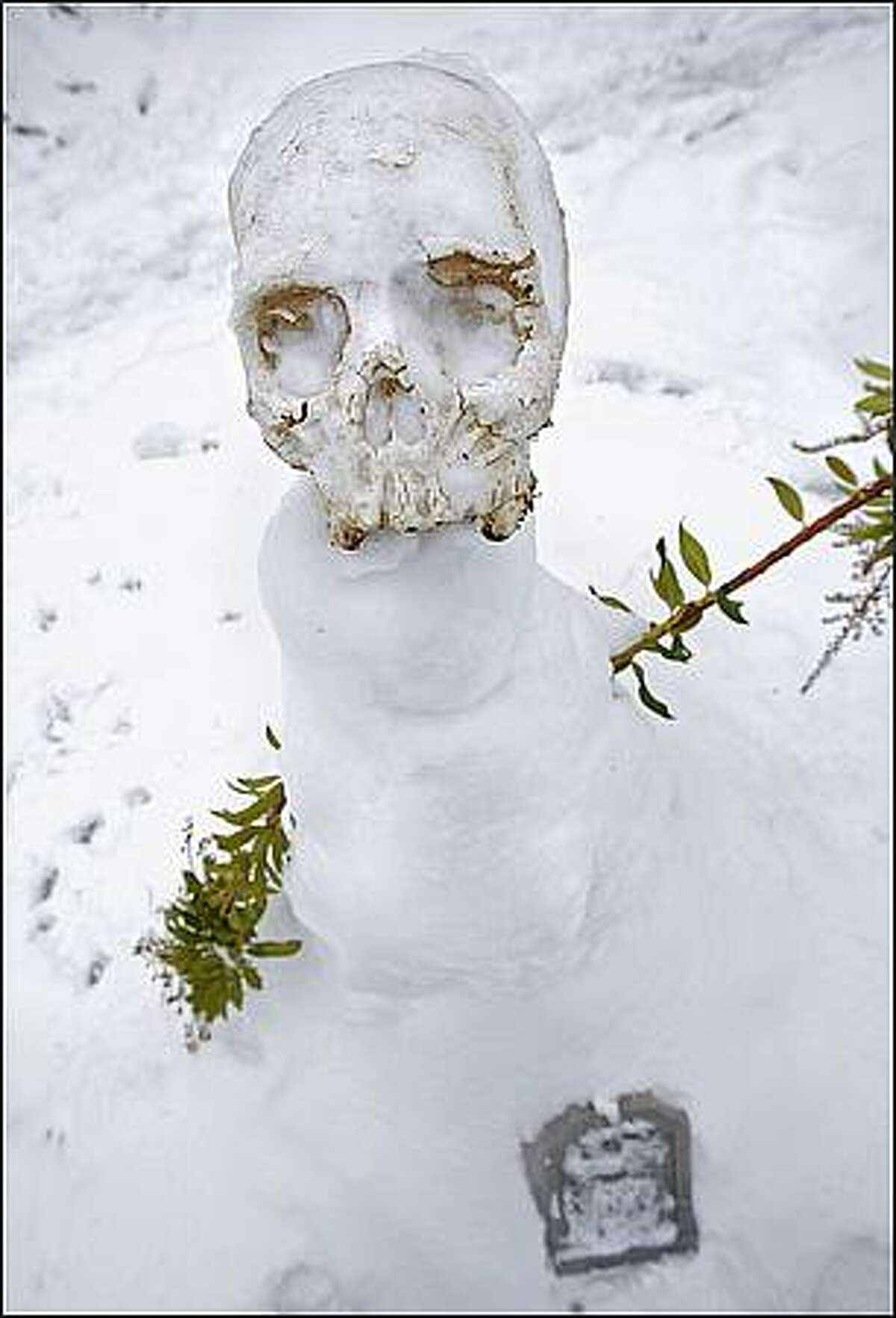 A skull finds new life as a snowman's head in Ballard. Dec. 23, 2008.