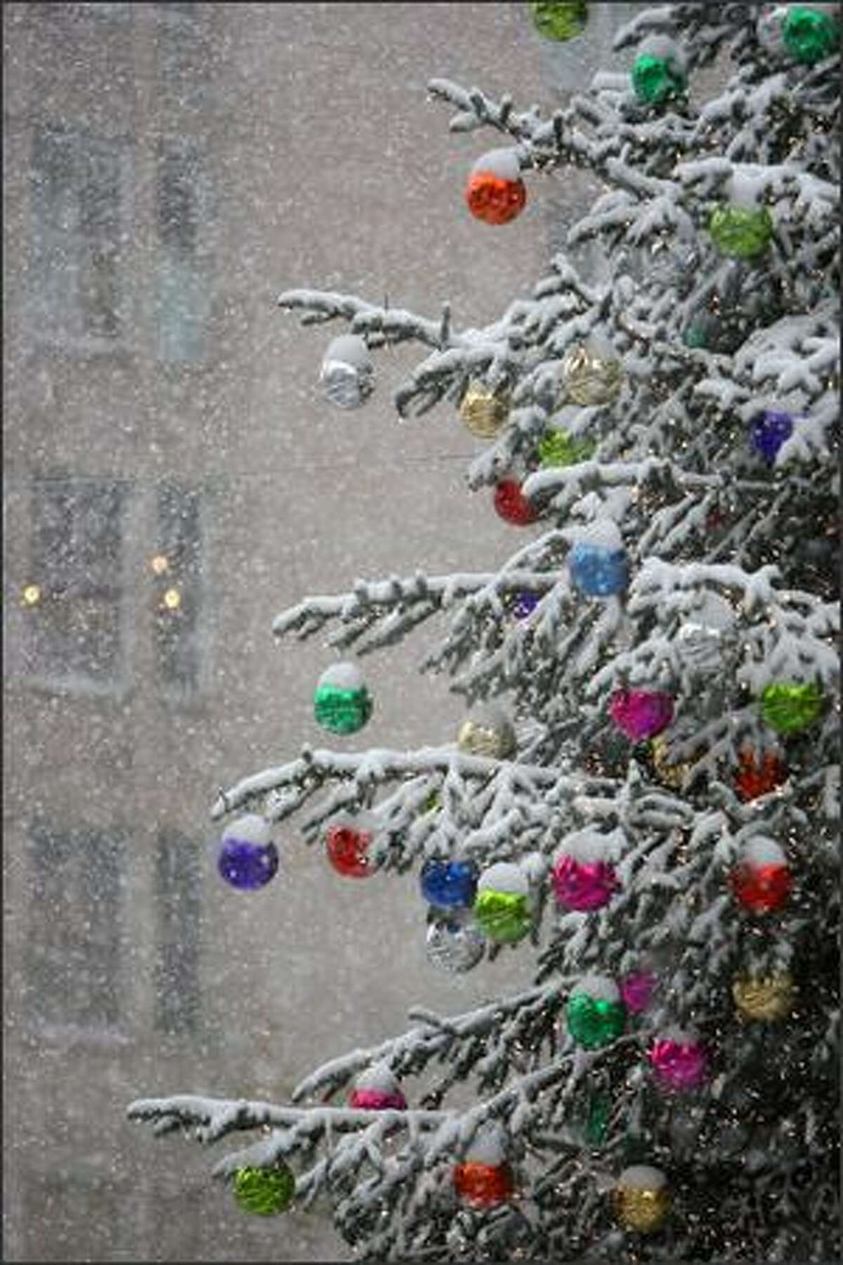 The holiday tree at Westlake Plaza collects snow during a heavy snowfall in Seattle on Thursday.