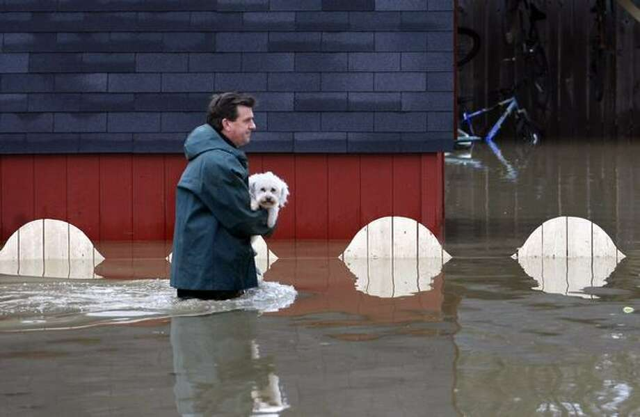 Pat Kelley carries one of his dogs back to his home after taking her to a piece of dry land to do her business in Snoqualmie on Jan. 8, 2009. Photo: Andy Rogers, Seattle Post-Intelligencer
