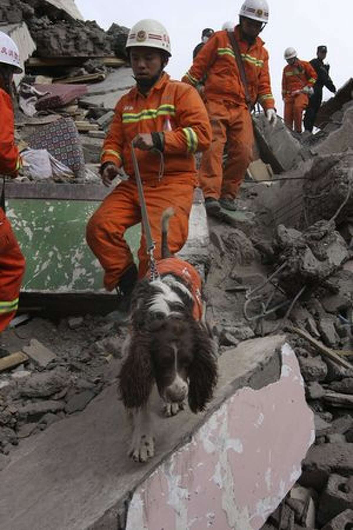 A dog leads a rescue worker searching for survivors in a pile of rubble in quake-hit Jiegu town in Yushu county in northwest China's Qinghai province, Friday, April 16, 2010. Rescuers probed the rubble for sounds or movement Friday in a rush to find anyone buried alive more than 48 hours after an earthquake hit western China, killing at least 760 people. (AP Photo)