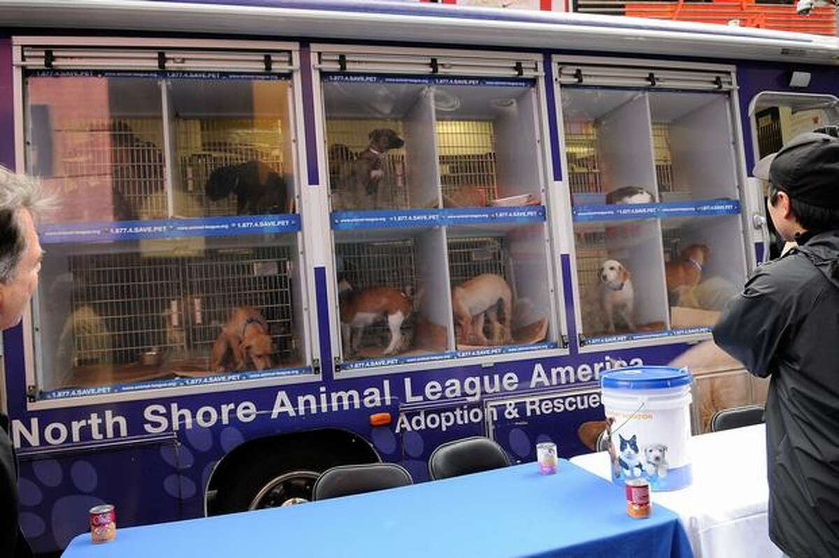 A view of dogs waiting for adoption at Mya Hosts North Shore Animal League America's Tour For Life at Times Square in New York City.