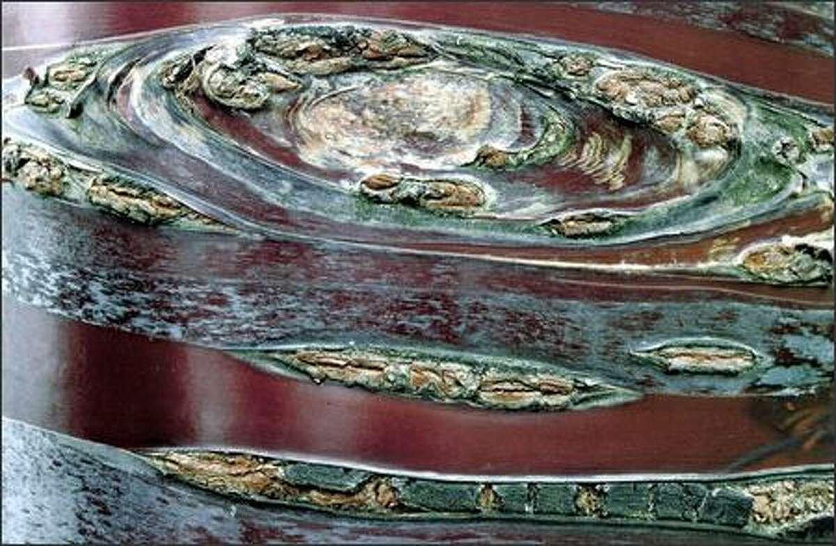 """Jupiter's Red Spot Lookalike,"" Ronald L. Black, Snohomish."