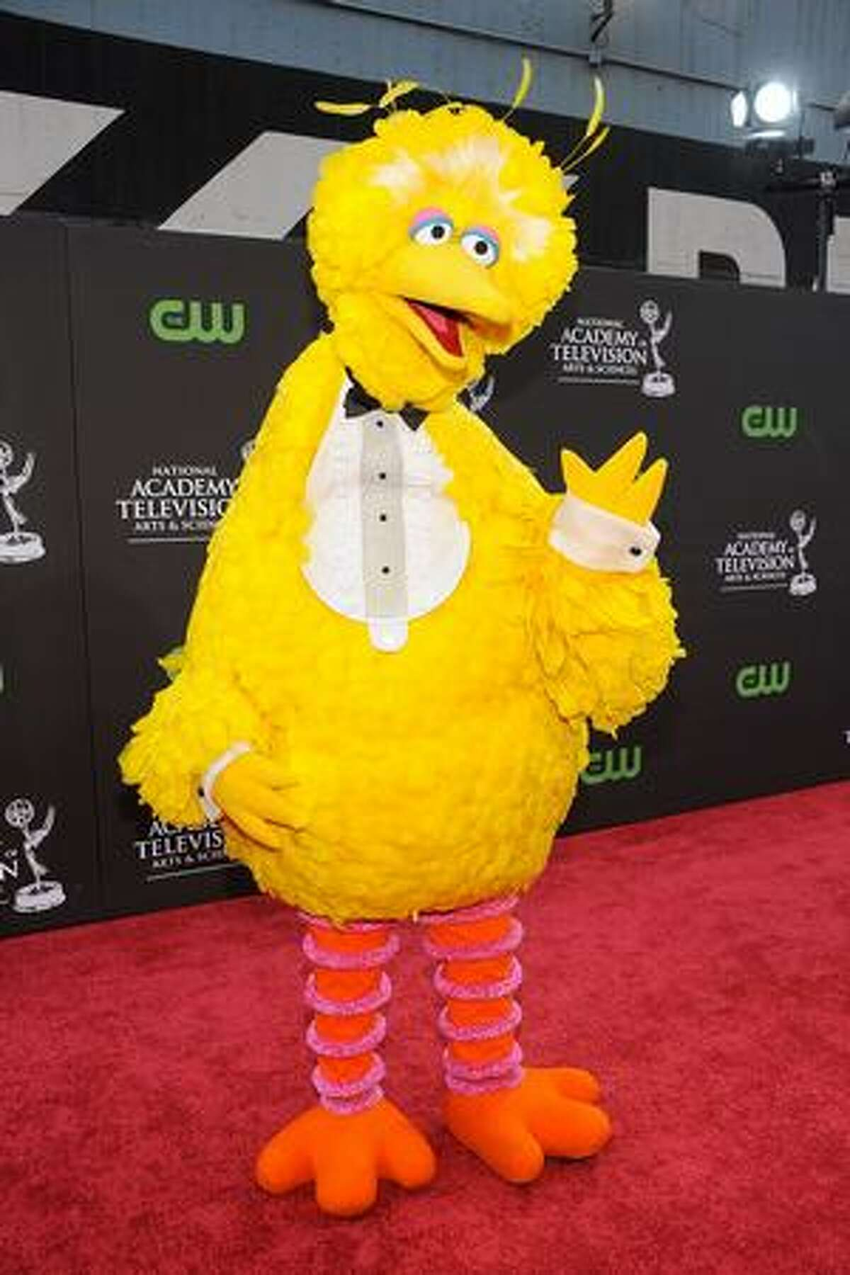 Big Bird arrives at the 36th Annual Daytime Entertainment Emmy Awards at The Orpheum Theatre on Sunday in Los Angeles, Calif.