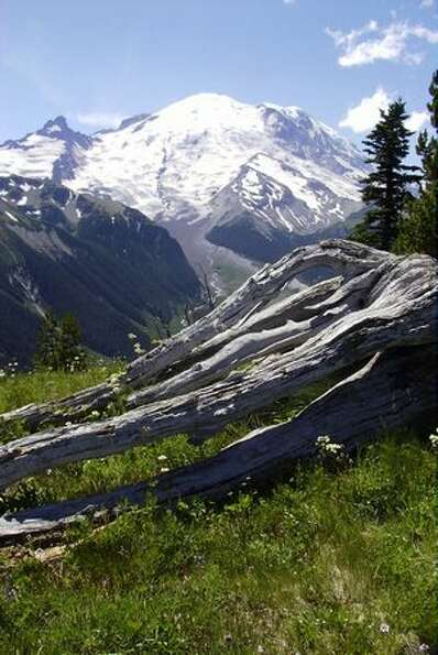 Emmons Glacier on Mount Rainier from Dege Peak trail.