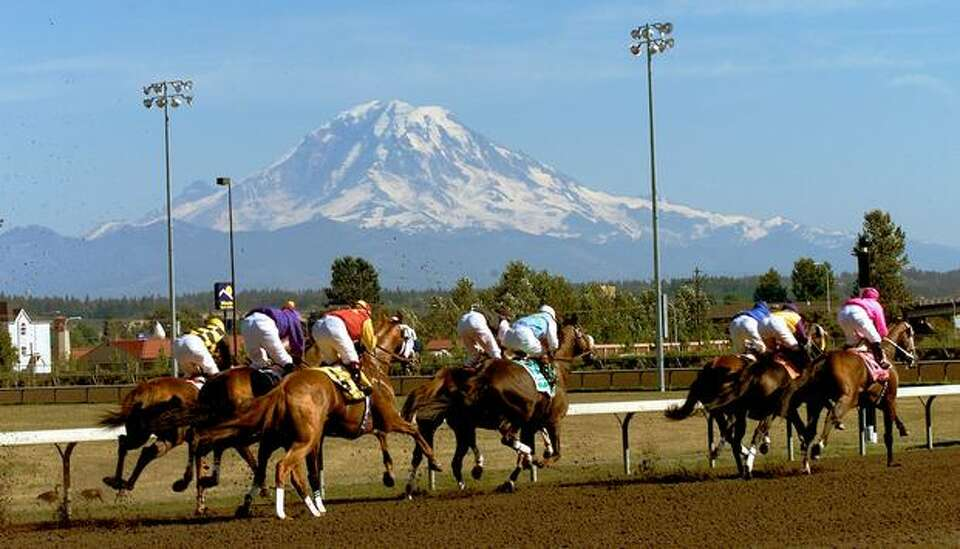 Horses in the Longacres Mile at Emerald Downs head into the first turn as Mount Rainier provides a b