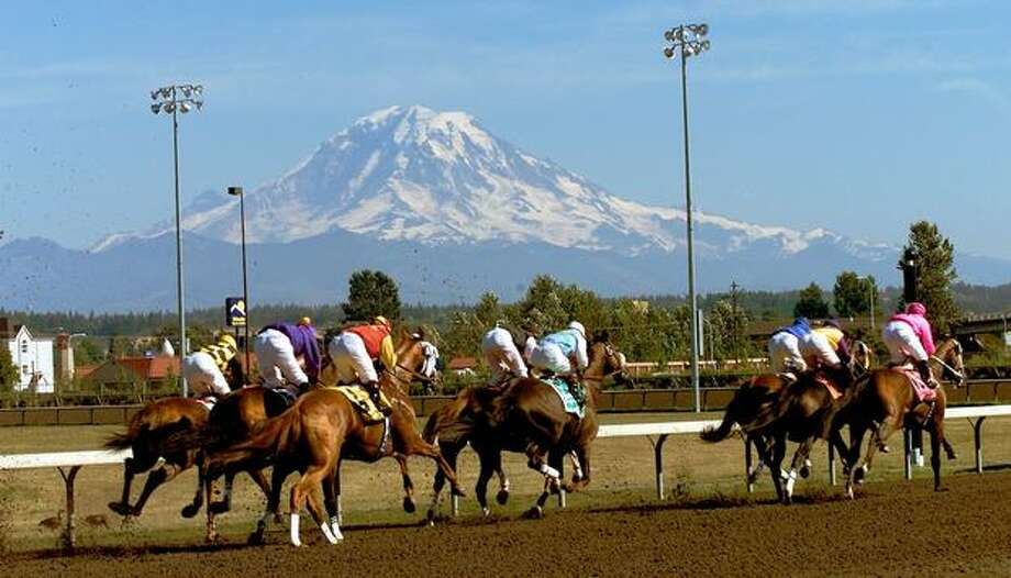 Horses in the Longacres Mile at Emerald Downs head into the first turn as Mount Rainier provides a beautiful backdrop for the race on August 22, 1999. (Grant Haller/P-I) Photo: P-I File