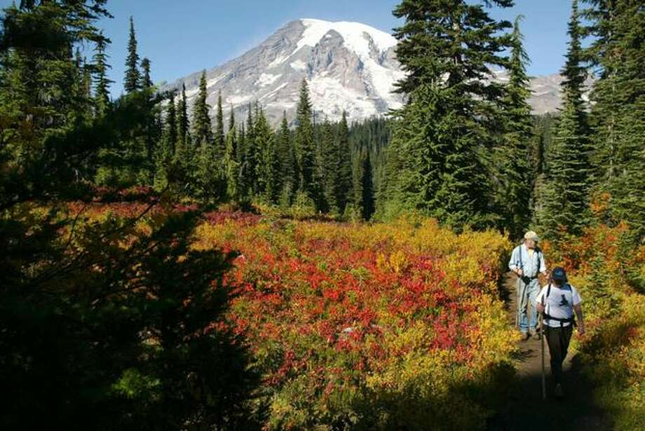 Kathi Acosta and Larry Shifflette, both from Eatonville, wander through colorful fall foliage during a hike up to Pinnacle Saddle in Mount Rainier National Park on Sunday, September 28, 2003. (Joshua Trujillo / P-I) Photo: P-I File