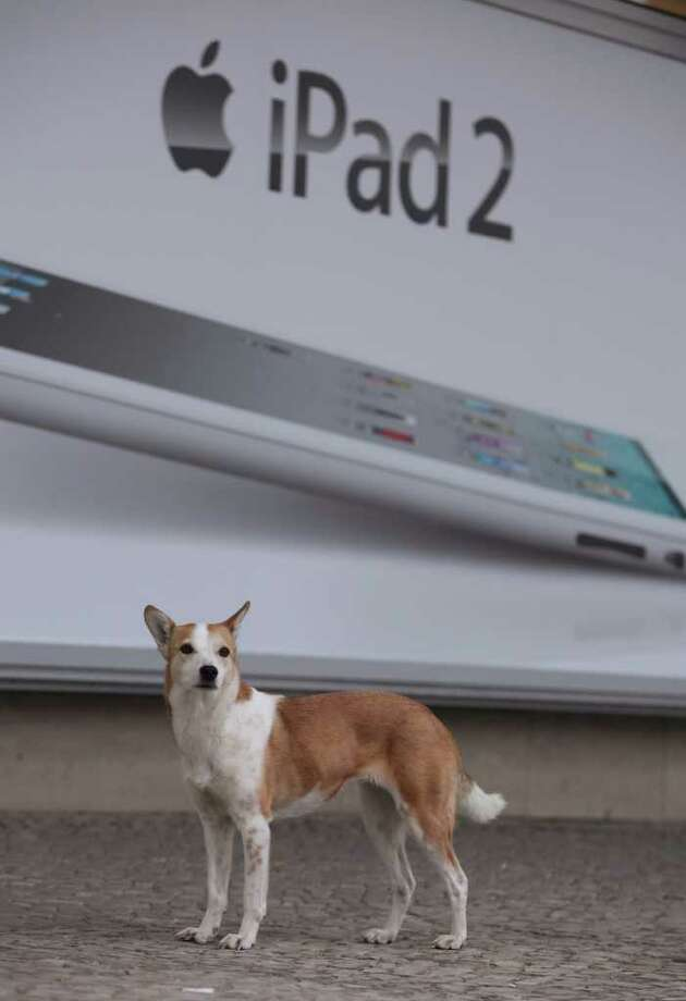 A dog stands in front of an advertisement for the new Apple iPad 2 on the first day the tablet computer went on sale in Berlin, Germany. Photo: Sean Gallup, Getty Images / 2011 Getty Images