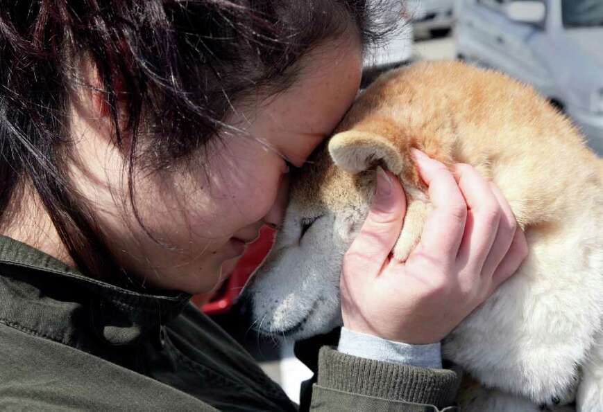Evacuee Shoko Igarashi hugs her dog before she goes into a shelter in Koriyama in Fukushima prefectu