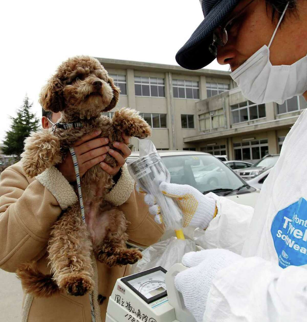 An official in a radiation protection suit scans a dog with a Geiger counter at a shelter in Koriyama in Fukushima prefecture, 60 kms west from the Fukushima nuclear power plant in Japan.
