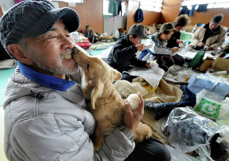 A man holds his dog at an evacuation center for tsunami survivors in Ishinomaki in Miyagi prefecture, Japan.  Photo: TORU YAMANAKA, Getty Images / 2011 AFP