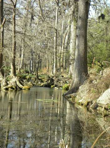 Honey Creek which is part of the Honey Creek State Natural Area. The area is part of  Guadalupe River State Park. Though most families come to the state park for the river, it also  has 5.3 miles of hiking trails.  Honey Creek State Natural Area is only open to the public by  guided hike. Photo credit: Tara Dooley / DirectToArchive
