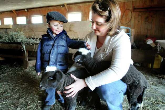 Liz Russell, right, holds her 2-week-old twin lambs while her son Andrew, 3,  pets them on Wednesday, March 30, 2011, at Foster Sheep Farm in Northumberland, N.Y. Daegan, left, and his sister, Daphne, are natural-colored Merino lambs.  The animals are a sign of spring ? as another storm nears.(Cindy Schultz / Times Union) Photo: Cindy Schultz