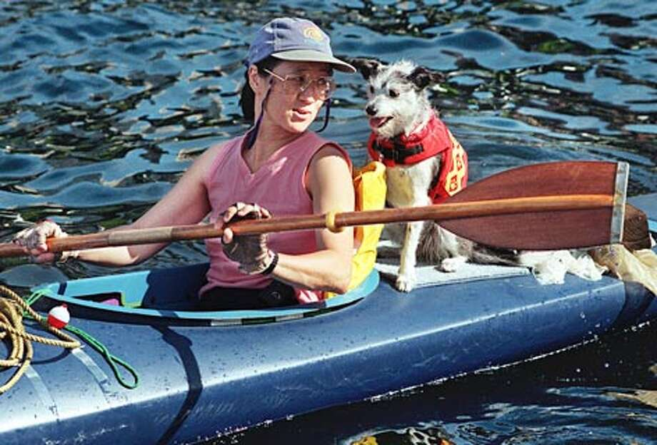 Elaine Chuang of Queen Anne kayaks across the Puget Sound near Pier 56 on Seattle's waterfront with her dog Tigger. (Dan DeLong / Seattle P-I)