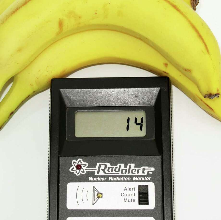 Potassium in bananas makes them very slightly radioactive. These bananas added a few counts per minute to the usual number. Photograph by Forrest M. Mims III. Photo: FORREST M MIMS 111