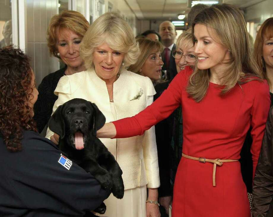 MADRID, SPAIN - MARCH 31:  Camilla, Duchess of Cornwall and Princess Letizia, Princess of Asturia stroke a guide dog puppy called Babu during a visit to the Guide Dogs Center at the ONCE Foundation on day two of a three day visit to Spain on March 31, 2011 in Madrid, Spain. Camilla, Duchess of Cornwall, and Prince Charles, Prince of Wales, are on a three day trip to Spain as part of a tour to Portugal, Spain and Morroco.  (Photo by Chris Jackson - Pool/Getty Images) *** Local Caption *** Camilla, Duchess of Cornwall;Princess Letizia, Princess of Asturia Photo: Chris Jackson, Getty Images / 2011 Getty Images