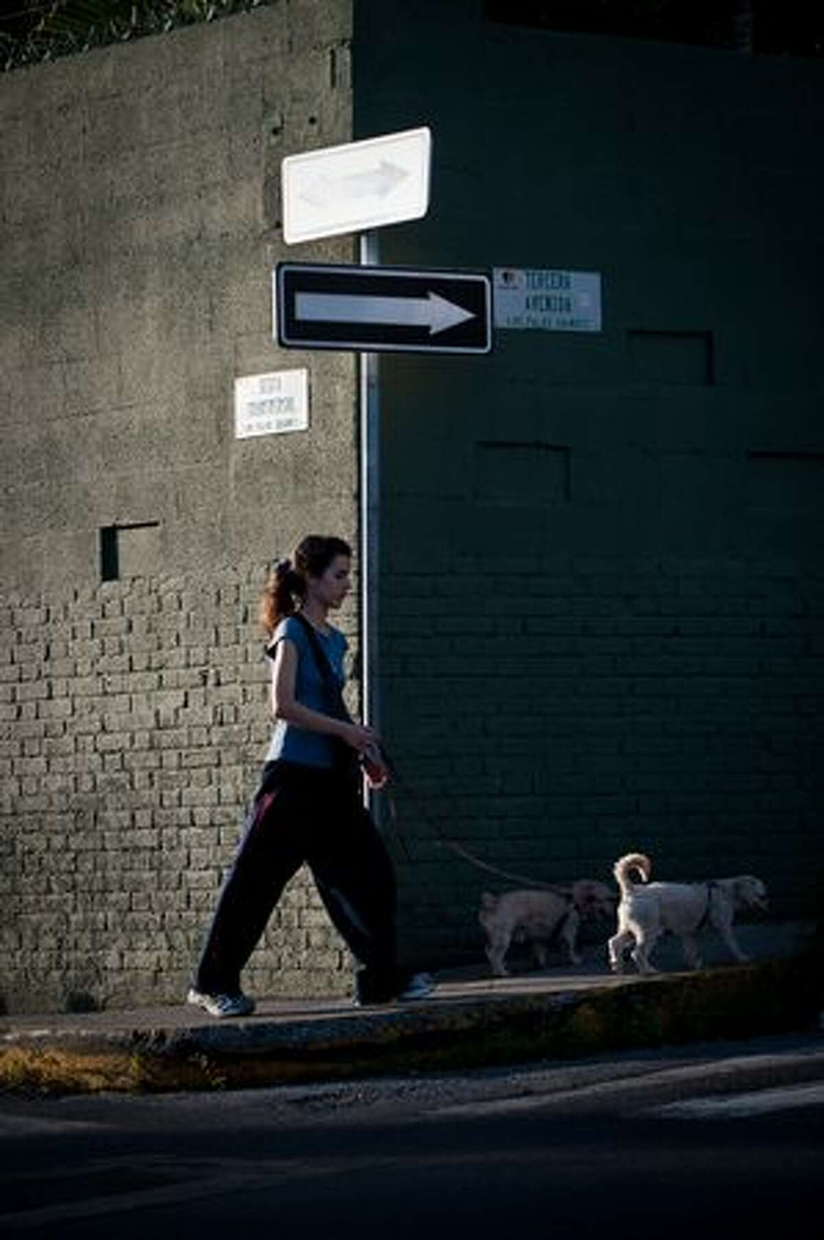A girl walks past a directional arrows while walking their dogs in a residential area of Caracas, Venezuela on January 6, 2011.