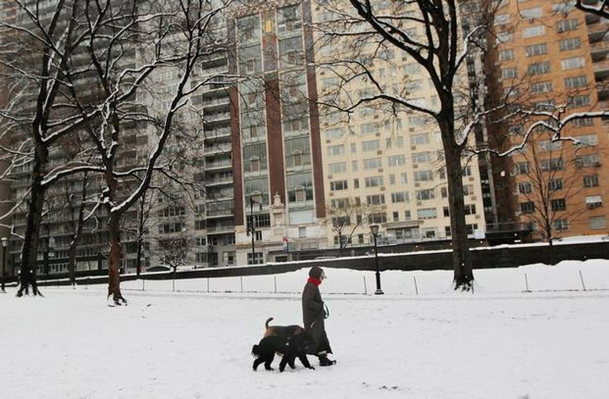 A woman walks two dogs during a snowstorm near apartment buildings on the south fringe of Central Park January 7, 2011 in New York City. Snow once again fell on New York, which is still recovering from a previous blizzard that generated widespread complaints against the city and its response to the storm.