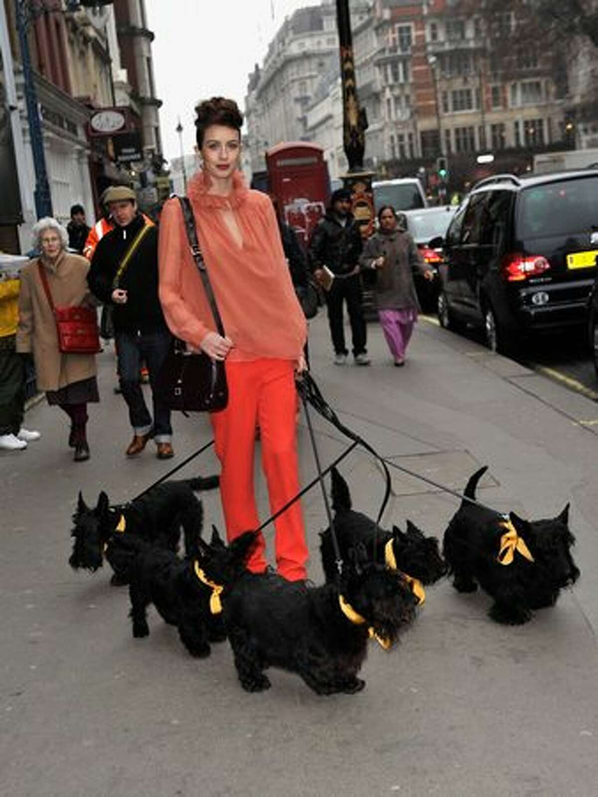 A model poses with dogs during the Radley London Photocall at London Fashion Week Autumn/Winter 2011 at Somerset House on February 21, 2011 in London, England.