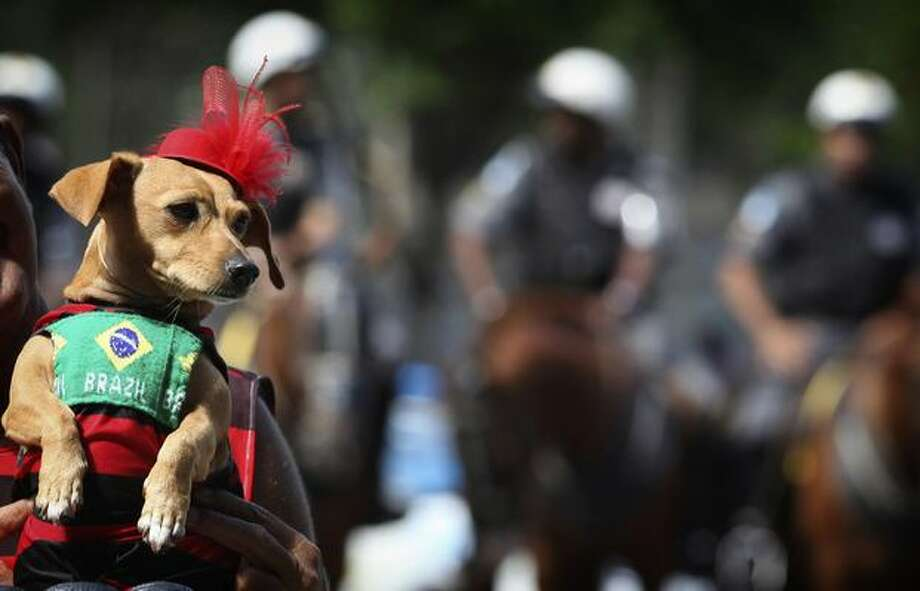 A dog dressed up with a Brazilian flag is held up during a protest against the visit of U.S. President Barack Obama in Rio de Janeiro, Brazil, Sunday, March 20, 2011. (AP Photo/Silvia Izquierdo) Photo: Associated Press / Associated Press