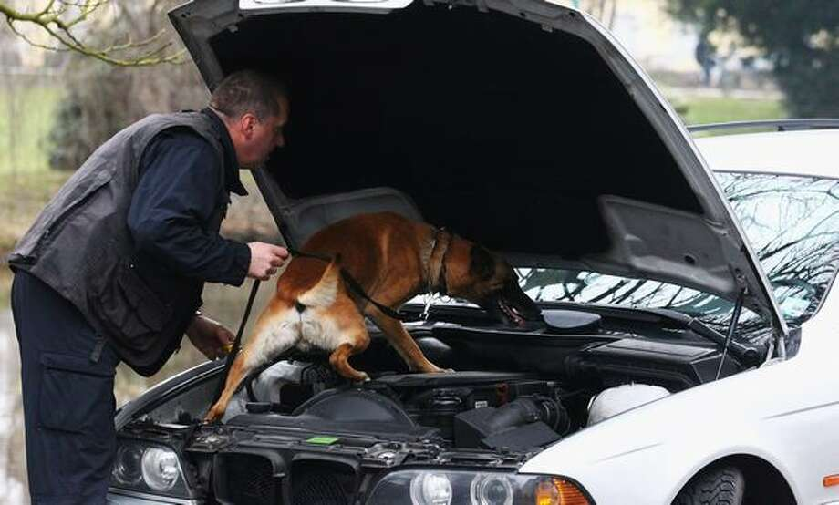 Cars are checked by police dogs in front of the court house on the first day of the trial for three members of the motorcycle gang for attempted murder and weapons possession on March 25, 2011 in Oldenburg, Germany. The three are accused of breaking into the MC Gremium club house in Steinfeld with the intent to kill the MC Gremium president at the time. Photo: Getty Images / Getty Images