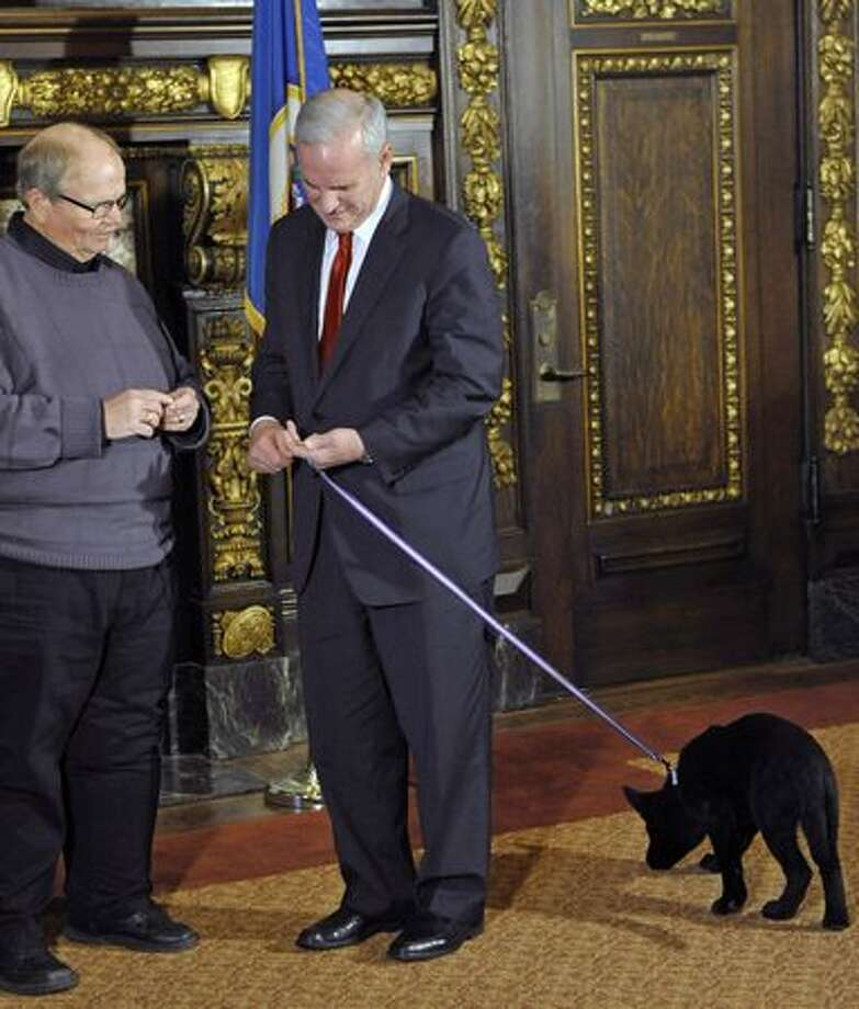 Eleven-week-old Mingo, lower right, pays no attention as its owner, Minnesota Gov. Mark Dayton, right, receives a special dog tag from Wanamingo, Minn., Mayor Ron Berg to to recognize and applaud Dayton for naming the puppy after the Minnesota city during a ceremony at the State Capitol Thursday, March 24, 2011 in St. Paul, Minn. (AP Photo/Jim Mone) Photo: Associated Press / Associated Press