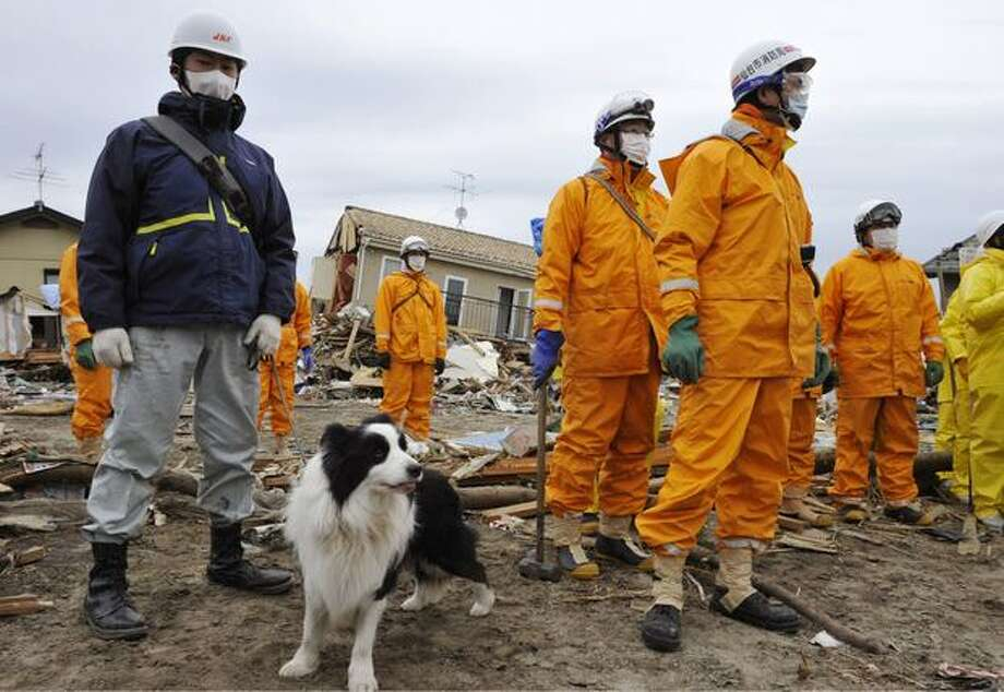 Recovery team members and a search dog work in an devastated area in Sendai, northern Japan, Monday, March 21, 2011, after the March 11 earthquake and tsunami. (AP Photo/Kyodo News) Photo: Associated Press / Associated Press