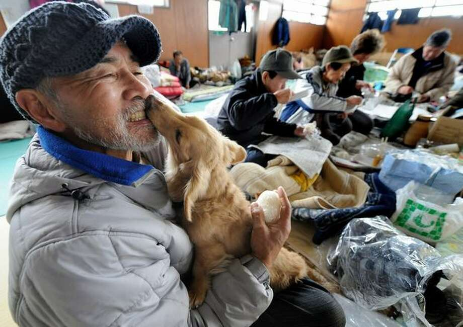 A man holds his dog at an evacuation center for tsunami suvivors in Ishinomaki, Japan on March 20, 2011. Photo: Getty Images / Getty Images