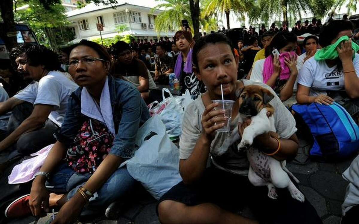 A Red Shirt anti-government protester holds her dog at the Police headquarters in downtown Bangkok after being moved from a temple which had been turned into a shelter within the protest site. Thai police escorted thousands of protesters out of a Buddhist temple where they had cowered overnight after nine people were killed there in gunbattles.
