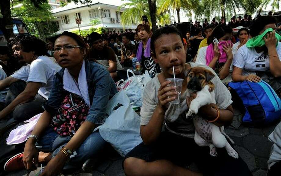 A Red Shirt anti-government protester holds her dog at the Police headquarters in downtown Bangkok after being moved from a temple which had been turned into a shelter within the protest site. Thai police escorted thousands of protesters out of a Buddhist temple where they had cowered overnight after nine people were killed there in gunbattles. Photo: Getty Images / Getty Images