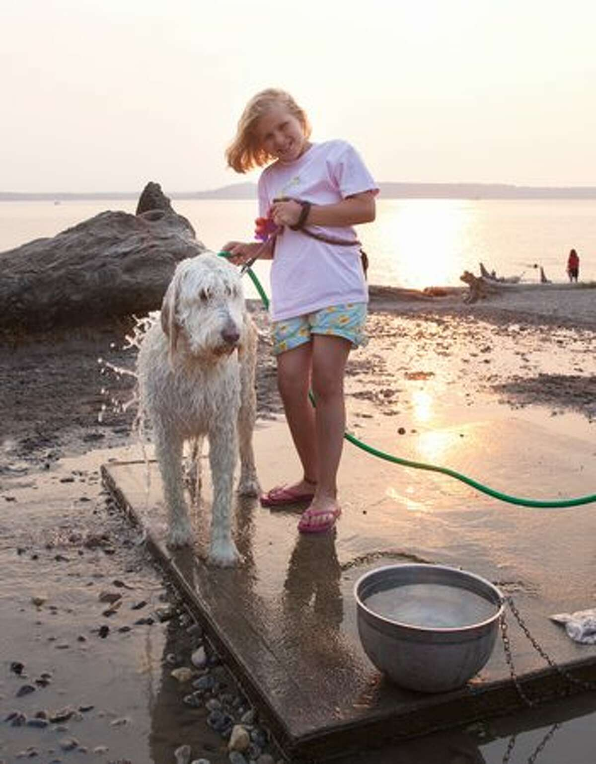 Jenna, 9, washes her Goldendoodle McKay at the off-leash area in the Edmonds Marina Park.